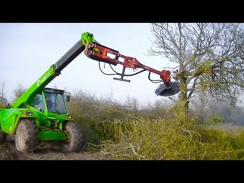 That S Cool Attachments Fastest Tree Trimming Machines In Action Youtube Tree Trimming Forestry Equipment Cool Stuff