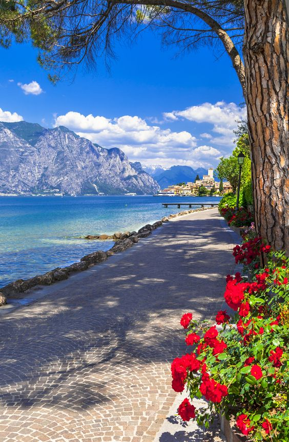Striking view by Lago di Garda, known for its crystal clear water. 🤩 ##Travel #Italy #Photography #Vacation #Venice #PerfectPicture #Europe #ItalyVacation #AmazingItaly #Italia #BeautifulDestinations #Lake #LagodiGarda