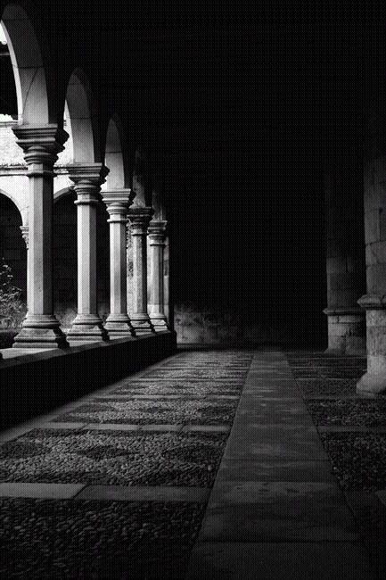 Claustros - Sé Catedral de Lamego - fotografia - Rui Santos