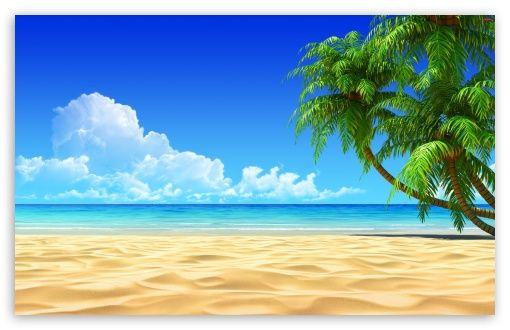 Palm Trees Hd Wallpaper For 4k Uhd Widescreen Desktop Smartphone Beach Wallpaper Beach Desktop Backgrounds Palm Trees Wallpaper
