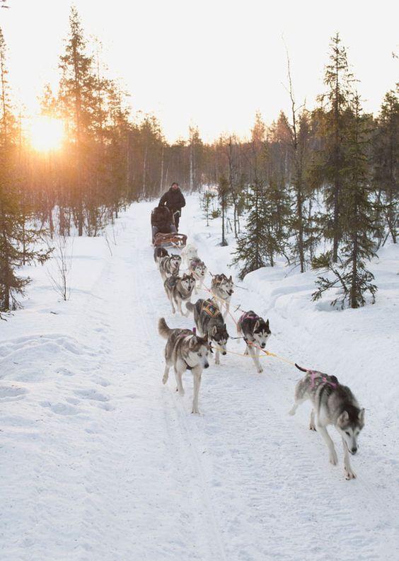 Laponie destinations noel