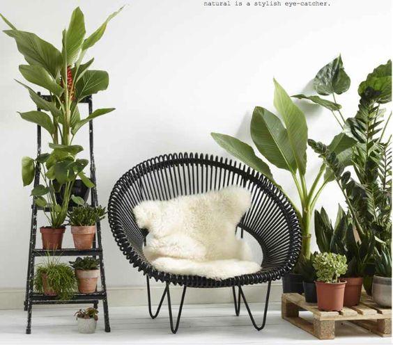 plante-verte-fauteuil-noir-atelier-n°7: