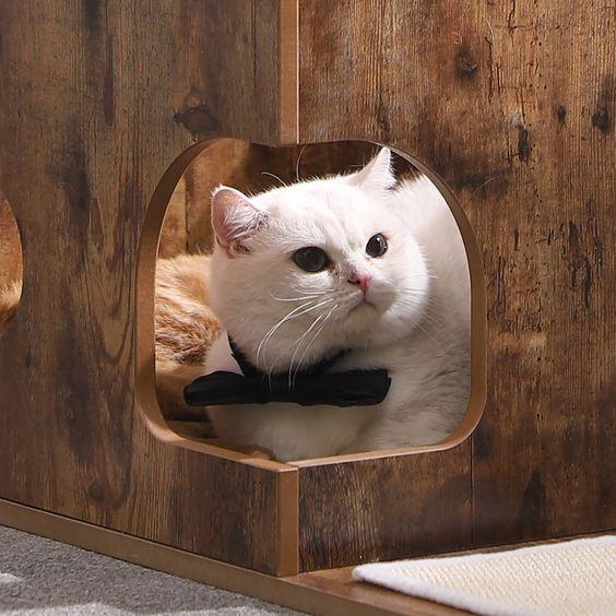 Pet Supplies Cat Kitten Condo Cat Tree Toy Pet Supplies