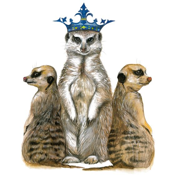 Prints for Nurseries, Wizard Illustrations, Meerkat Family on 300gsm cotton rag paper, limited edition print of 50. Available in A3 & A4 #prints #printsfornurseries