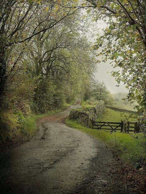 Country lane, Cumbria,England