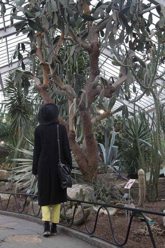 Montréal's Botanical Garden - Fashion Is My Religion - photo by Charlotte Latraverse