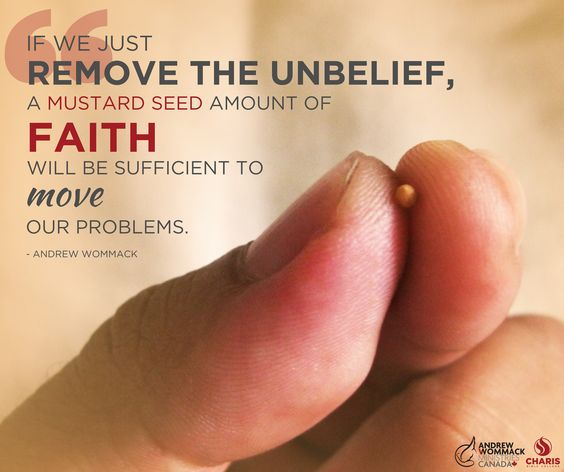 """If we just remove the unbelief, a mustard seed amount of faith will be sufficient to move our problems."" - Andrew Wommack"