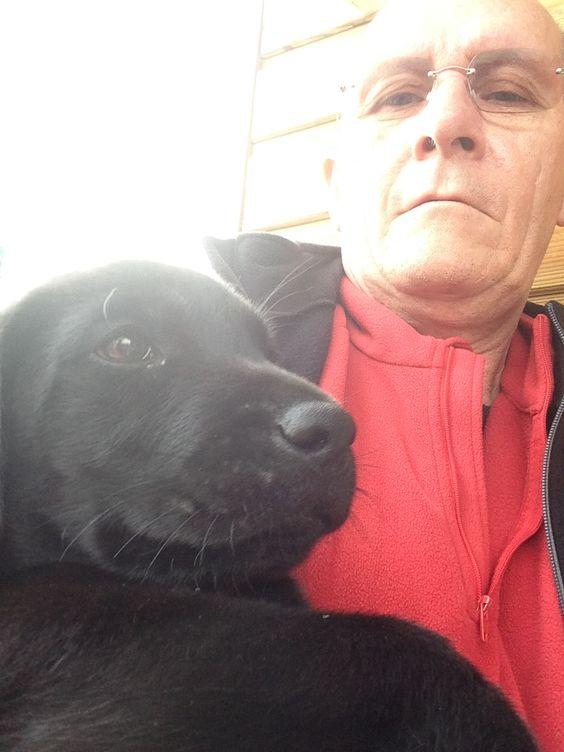 Moi Jino labrador de 2 mois dans les bras de ma famille d'accueil