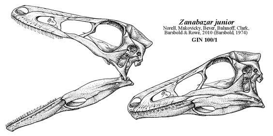 Crâne de Zanabazar junior, GIN 100/1, par Jaime Headden, 2001.