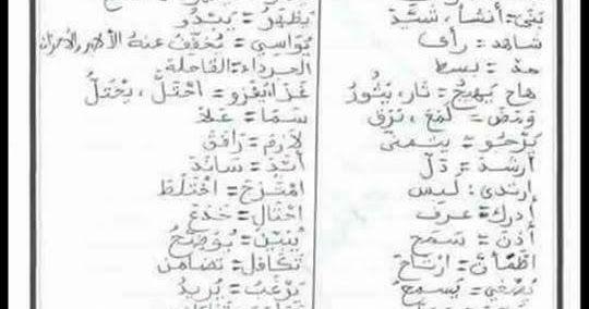 بعض المرادفات و الأضداد مادة اللغة العربية للتعليم الابتدائي الجيل الثاني Primary Education Education Math
