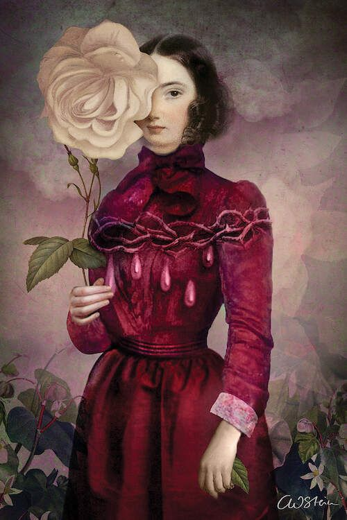The Intriguer Canvas Print by Catrin Welz-Stein | iCanvas