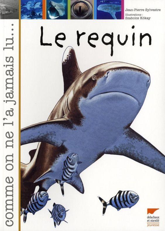 Amazon.fr - Le requin - Jean-Pierre Sylvestre, Szabolcs Kókay - Livres