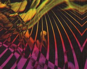 80-cm-Rapport Viskose-Jersey mit Digitaldruck RAYS, Strahlen-Muster, orangerot-schwarz