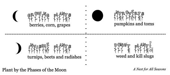 Planting by Moon Phases : Arcadia Farms