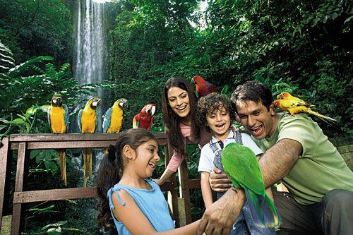 Vườn chim Jurong (Singapore) trải rộng trên diện tích 20ha..