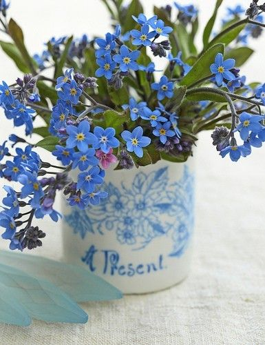 Forget Me Nots…♥