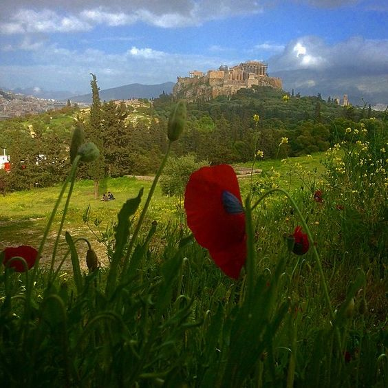 """""""Pnyx and the Acropolis - Athens"""""""