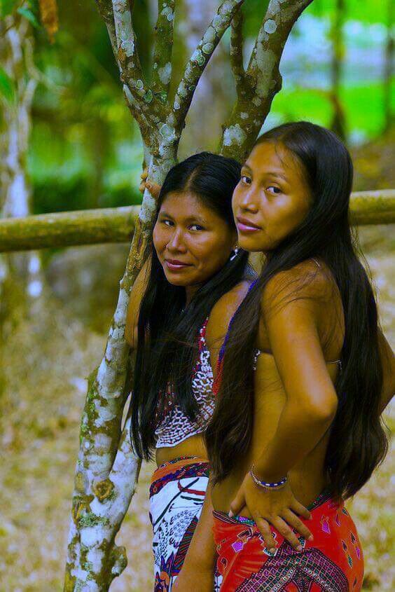 Pin By Mike Myers On People Natives Native American Girls