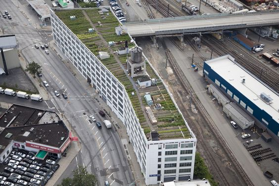 42,000 square feet urban farm created on new york rooftop