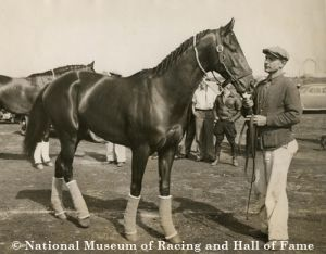 War Admiral, son of Man o' War, won the 1937 Triple Crown. Photo courtesy of the National Museum of Racing and Hall of Fame.