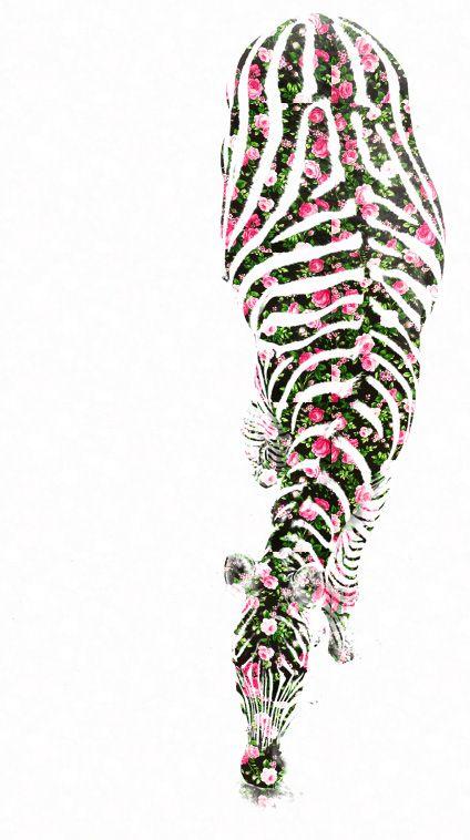 pattern-me, floral zebra : animal prints in alternative pattern