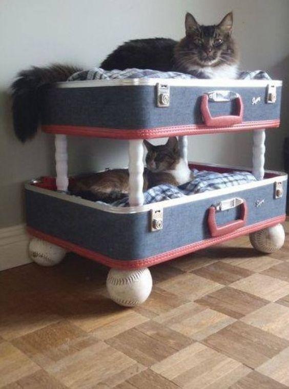 Gezellig  samen ;Is een bewijs van wat je kunt doen met oude bagage. Zo leuk!