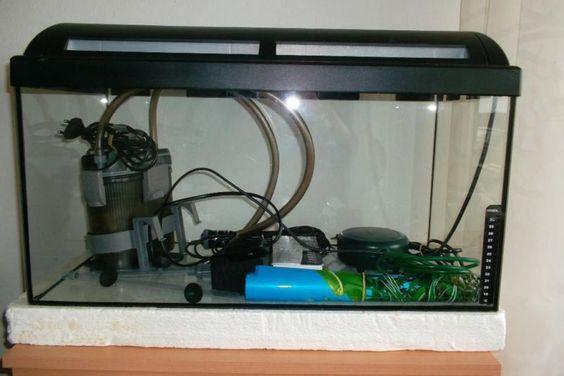 Biete mein Aquarium an!Maße: 60x30x30Mit Deckel und BeleuchtungAlles dabei um gleich los zu legen!Zubehör:Luftpumpe Vita-TechAußenfilter Exo-Terra FX 200 ( 1 J., Np 79,90 €)Heizstab Pro Temp S50 ( 0,5 J., Np ca. 20 €)2 HintergrundbilderFür Anfänger ideal geeignet!!!Wie immer, bei Privatverkäufen, gewährleiste ich keinerlei Garantie odereine Rücknahme!