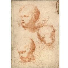 Tres estudios para la cabeza Serafines, Círculo de François du Quesnoy
