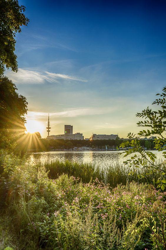 Gegenlicht am Hamburger Fernsehturm | Bildschönes Hamburg