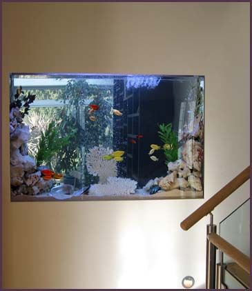 Salts window and living rooms on pinterest for Thin fish tank