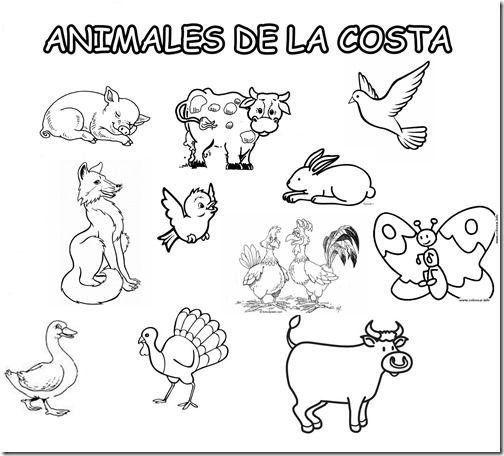 Region Sierra Para Pintar Animals Prints Fictional Characters