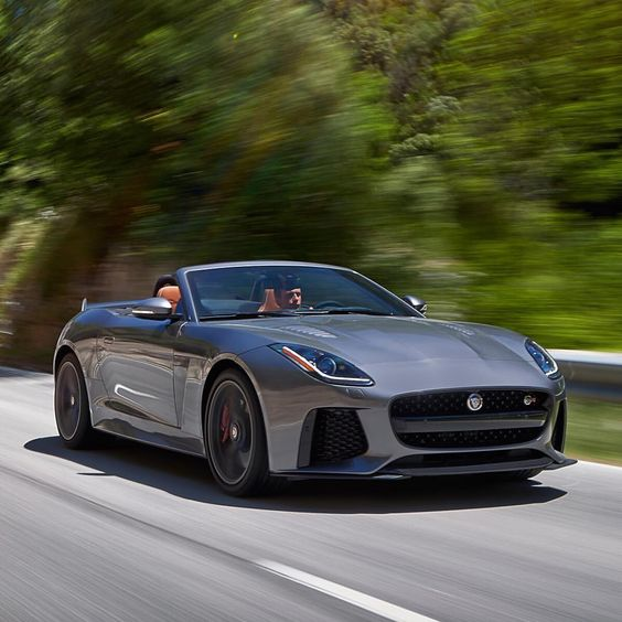 The cat is ready for its close up.  #Jaguar #FTYPE #SVR #Power #Performance #AWD