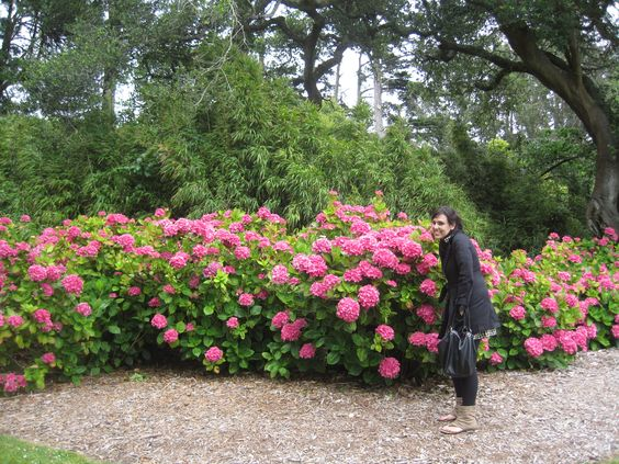 Lovely girl...lovely flowers!