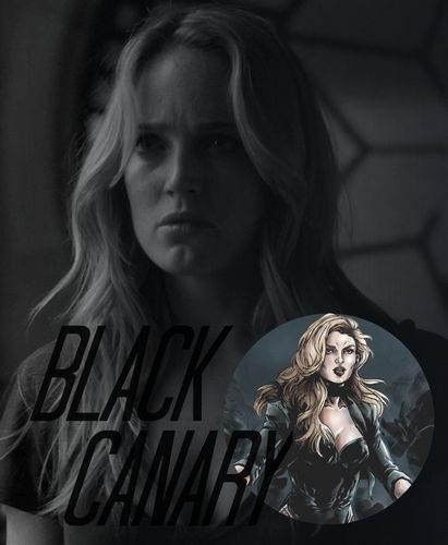 DC Television Universe: Black Canary