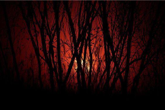 Tarde roja, photo by una cierta mirada on Flickr