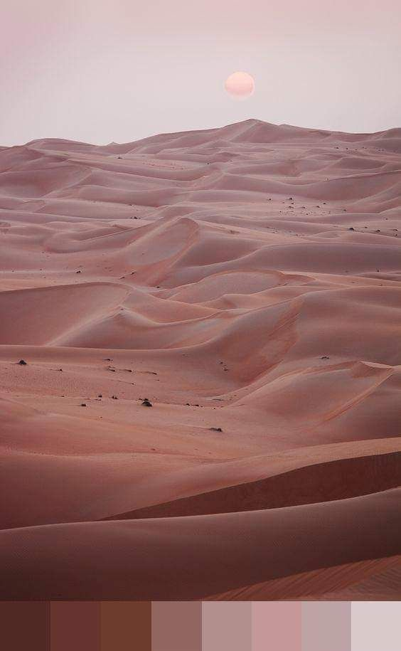 Pin by lianghuili on 配色 (With images) | Desert vibes