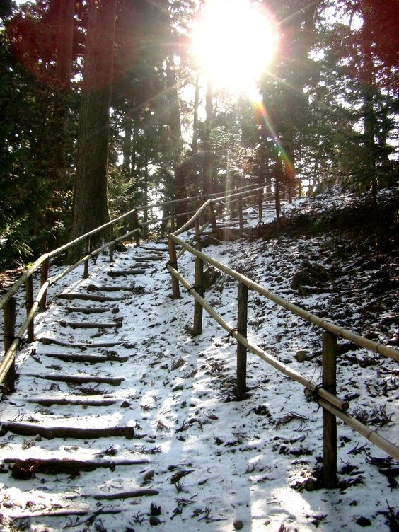 Google Image Result for http://fc09.deviantart.net/fs71/f/2010/332/9/3/snow_covered_stairs_by_nenco-d33sjqi.jpg
