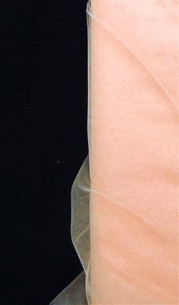 24.00 SALE PRICE! Create cheerful, spring-inspired decorations for your costuming or wedding with this translucent fabric. The Peach Tulle Bolt can be fashio...