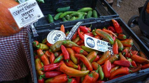 Maps & Raps - Austin: Mueller Farmers' Market