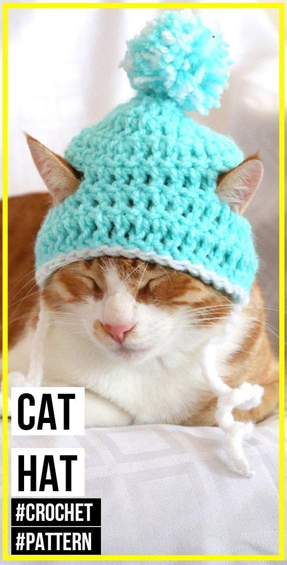 Crochet Cat Hat Pattern Cat Hat Pattern Crochet Cat Hat Cat Beanie