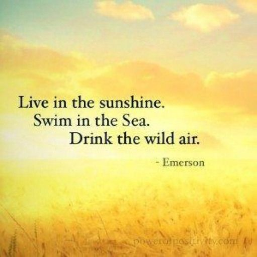sunshine-quote-inspirational-emerson #happinessquotes #happiness #quotes #sunshine