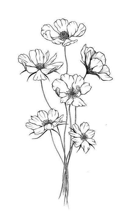 Pin By Barb Bates On Art Pen Ink Paint In 2020 Flower Line Drawings Flower Sketches Flower Drawing