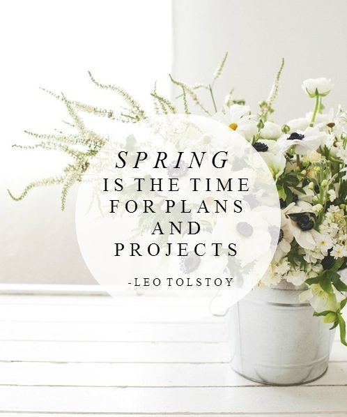 Spring is the time for plans and projects. Spruce up your home with new plantation shutters, shades, perfect fit blinds, and more!: