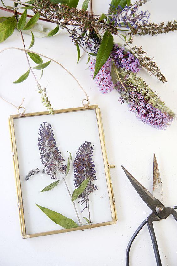 getrocknete Blumen im Bilderrahmen
