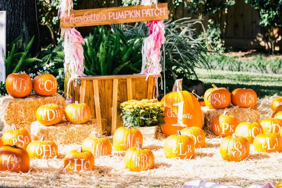 Backyard Pumpkin Patch Party :  birthday parties first birthday parties pink minis pink pumpkins first