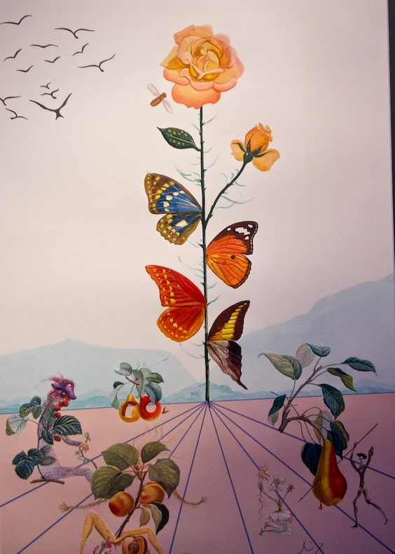 butterflies by Salvador Dali - Google Search                                                                                                                                                      More
