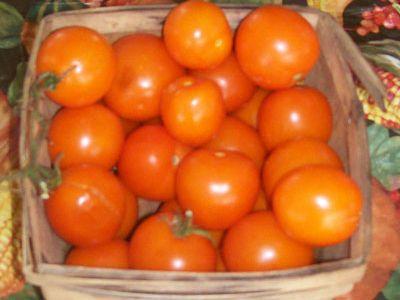 Cherry mini orange