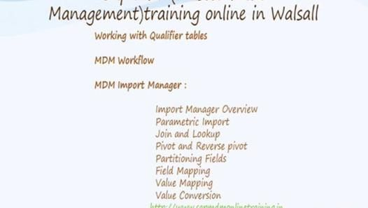 undefined TRaining Pinterest Master data management and - retail interview questions