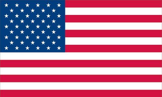 Democratic Party In 2020 American Flag Flag Veterans Flag