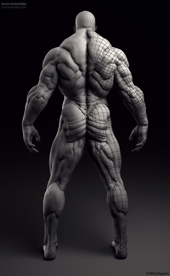 Extreme Bodybuilder - vray renders via cgpin.com